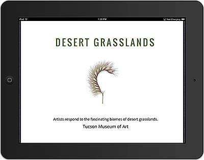 iPad image of the book cover